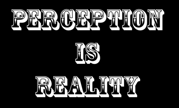 perception-is-reality11