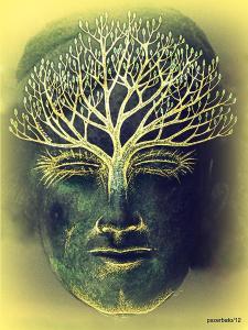 the-awakening-of-the-self-awareness-equinox-paulo-zerbato