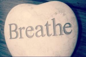 BReathe-550