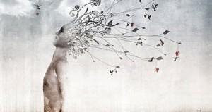 http://sanctuairesoulssanctuary.com/souls-talking-brain/2012/conscious-co-creation/